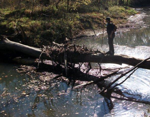 Bob crossing a creek at Rock Bridge State Park
