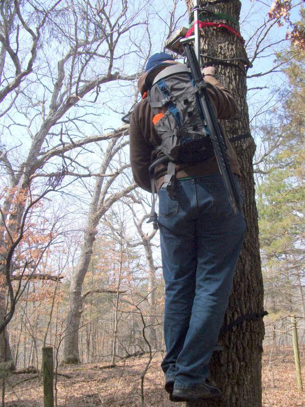Bob climbing deer stand