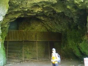 Cara was pretty sure this gate was built to contain the cave-monsters..