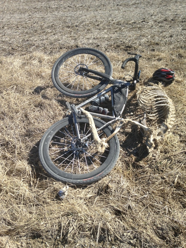 Cedar Cross Victim on a bike