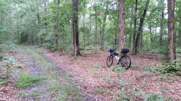 Note the trail marker behind the bike. I didnt see it in the dark and stayed on the fire road.